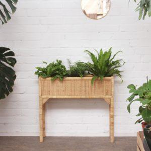 großer Pflanzenständer aus Rattan mit Pflanzen